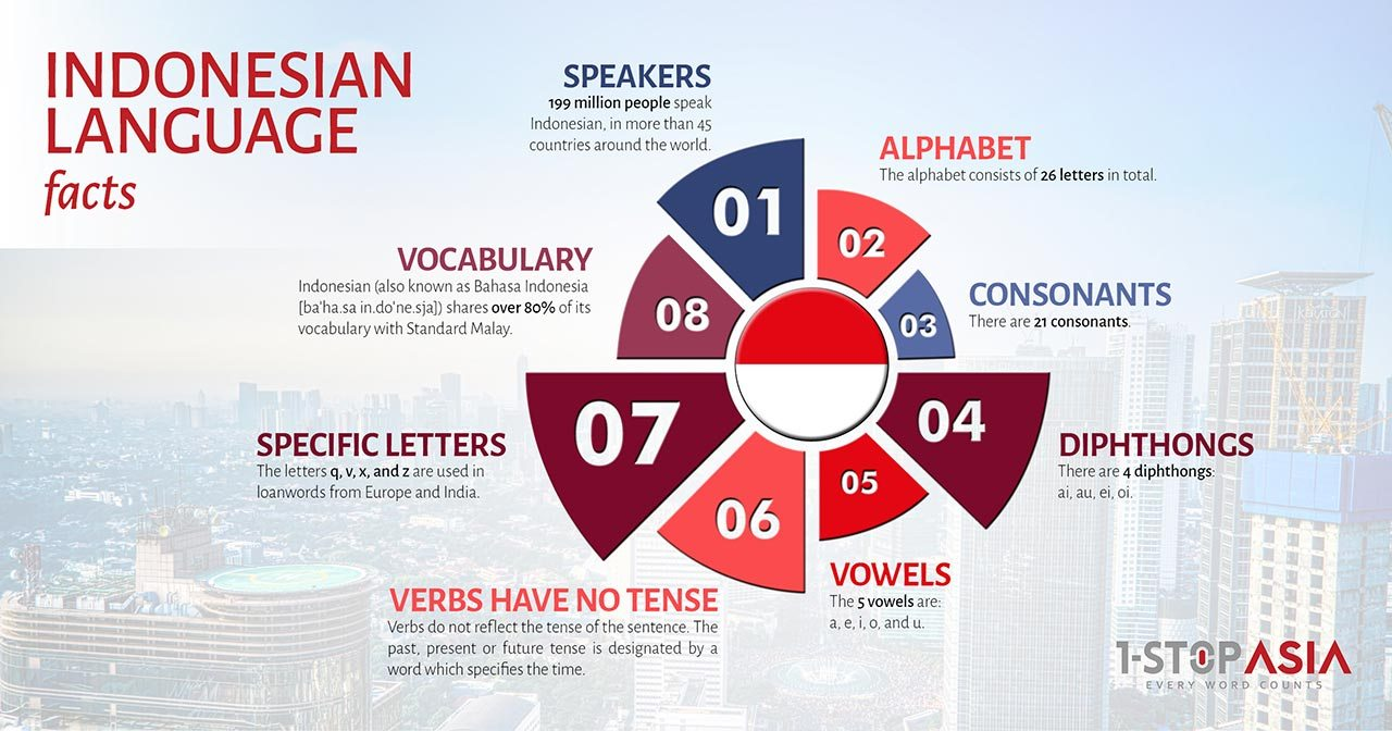 Indonesian Language Infographics