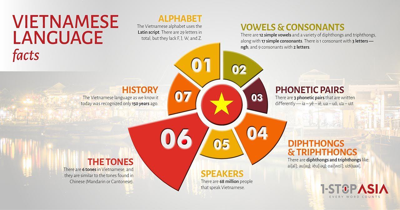 Vietnamese Language Infographics